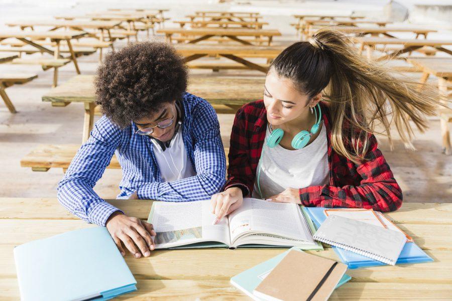 Quais São As Matérias Do Primeiro Ano Do Ensino Médio